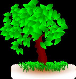 Disegno in terapia - albero della vita