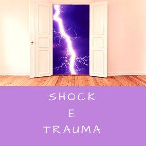 francesca-fontanella-psicologo-shock-e-trauma